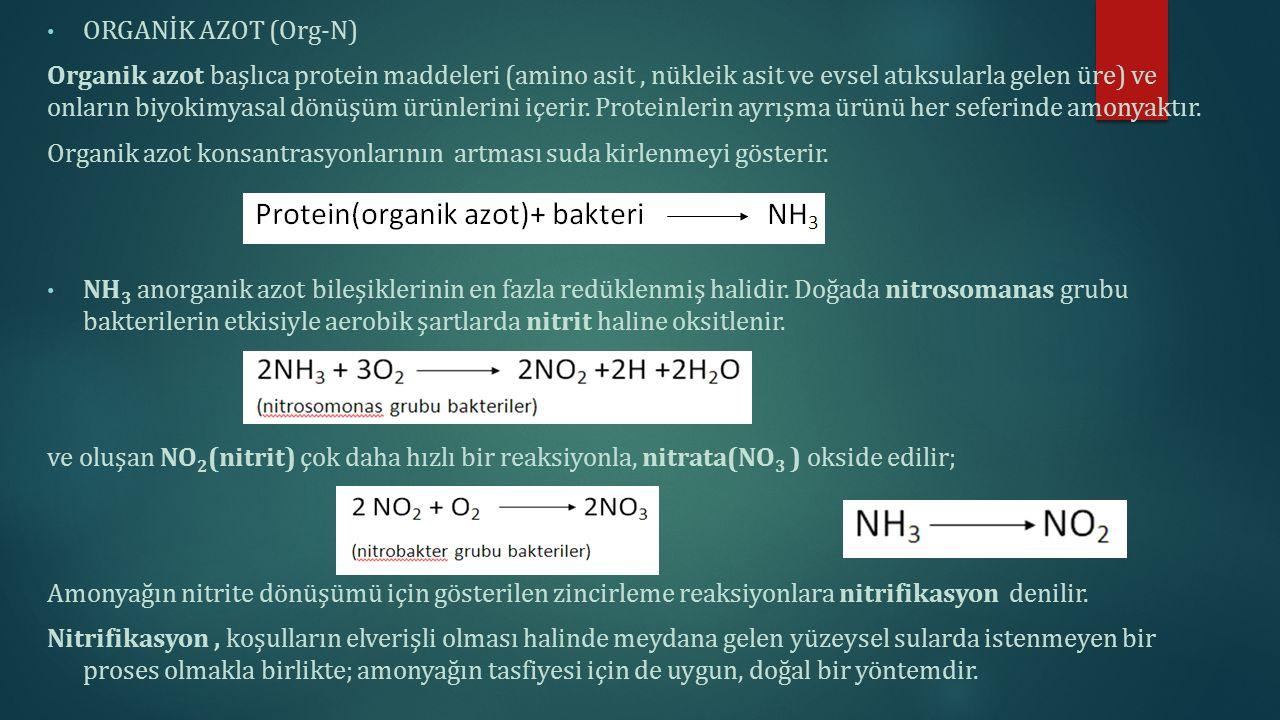 ORGANİK AZOT (Org-N) Organik azot başlıca protein maddeleri (amino asit, nükleik asit ve evsel atıksularla gelen üre) ve onların biyokimyasal dönüşüm