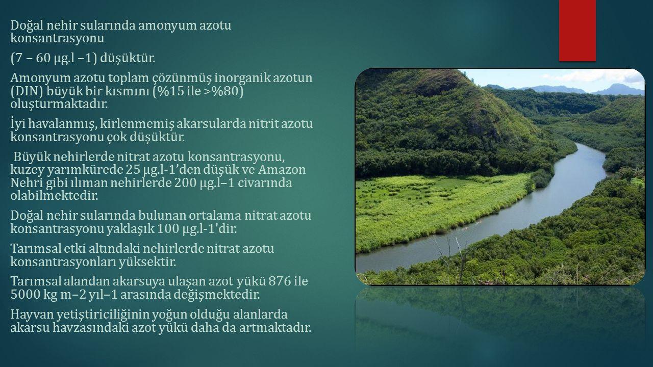 Doğal nehir sularında amonyum azotu konsantrasyonu (7 – 60 μg.l –1) düşüktür. Amonyum azotu toplam çözünmüş inorganik azotun (DIN) büyük bir kısmını (