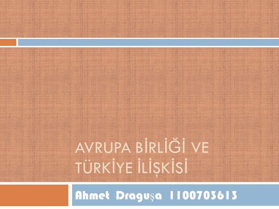 AVRUPA B İ RL İĞİ VE TÜRK İ YE İ L İ ŞK İ S İ Ahmet Dragu ş a 1100703613