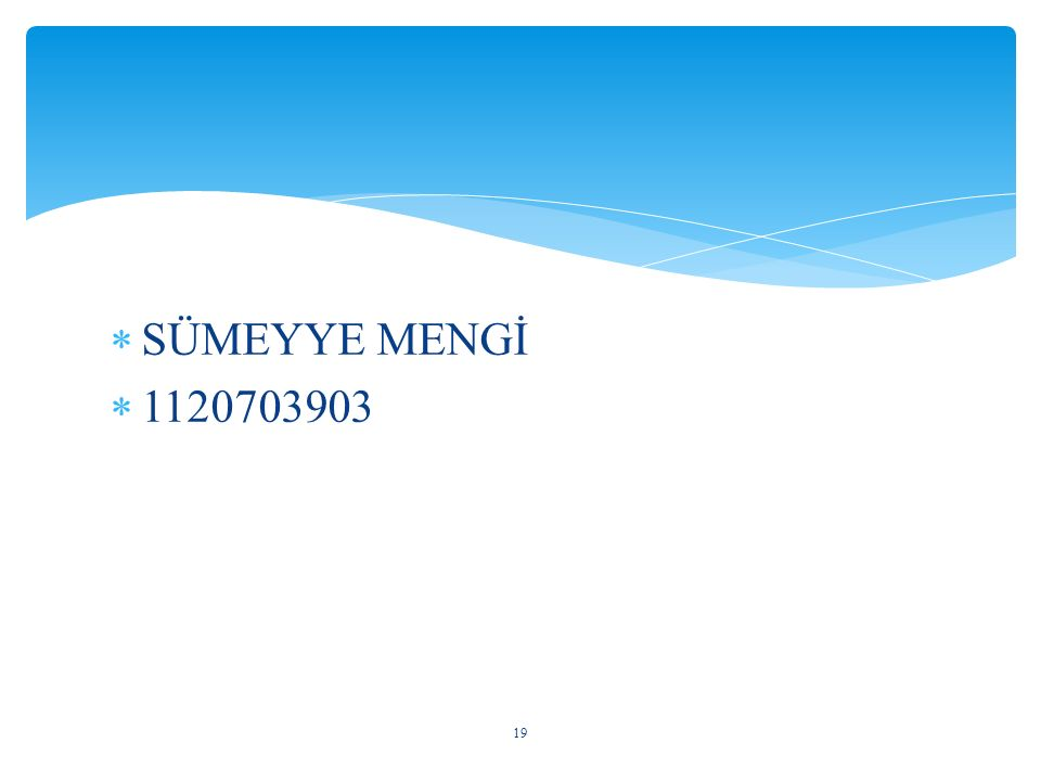  SÜMEYYE MENGİ  1120703903 19