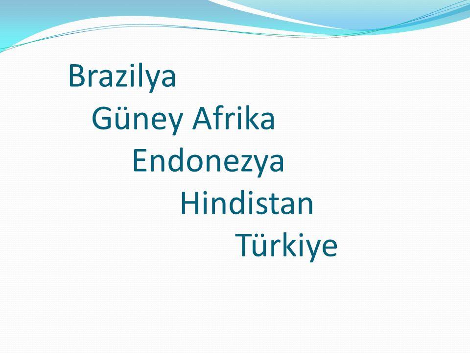 Brazilya Güney Afrika Endonezya Hindistan Türkiye