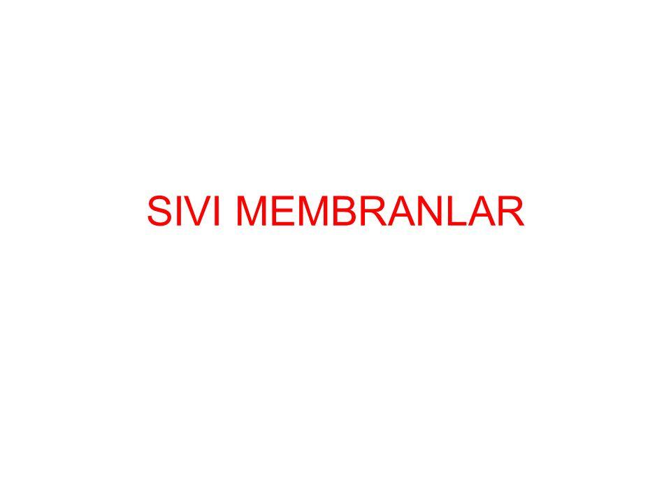 Selektivite ve kütle akısı bir membran işleminde en önemli iki parametredir.