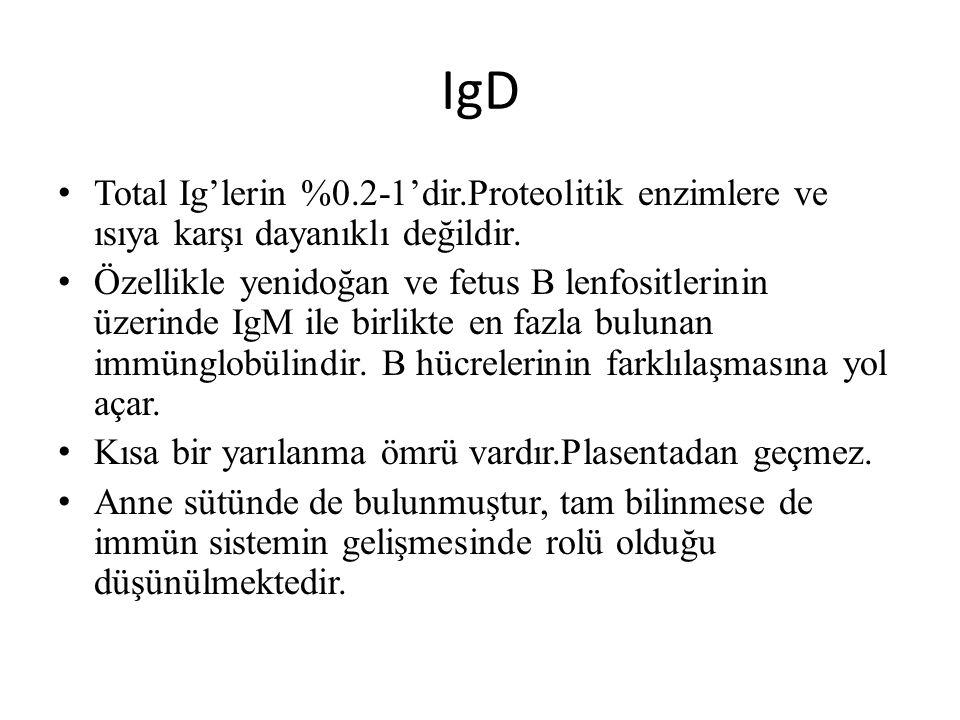 IgD Total Ig'lerin %0.2-1'dir.Proteolitik enzimlere ve ısıya karşı dayanıklı değildir. Özellikle yenidoğan ve fetus B lenfositlerinin üzerinde IgM ile