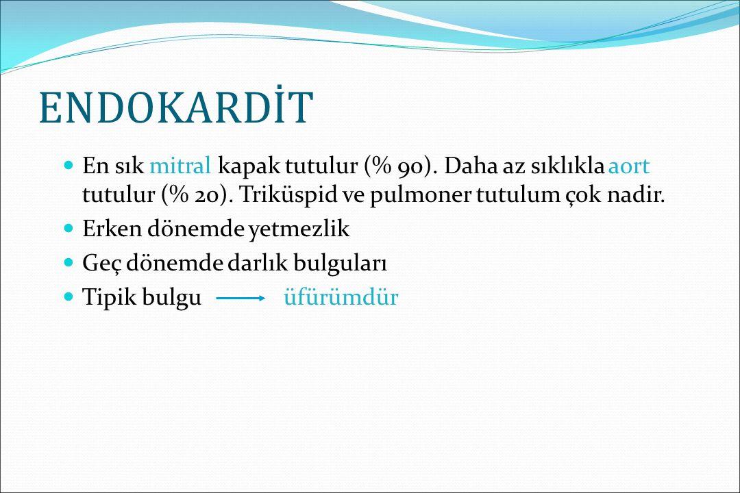 KARDİT-1 En önemli majör bulgudur.