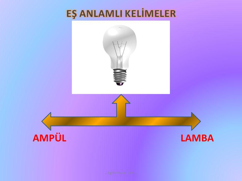 AMPÜL LAMBA …Egitimhane.com…