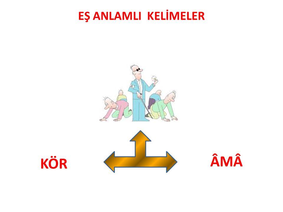 EŞ ANLAMLI KELİMELER ÂMÂÂMÂ KÖR