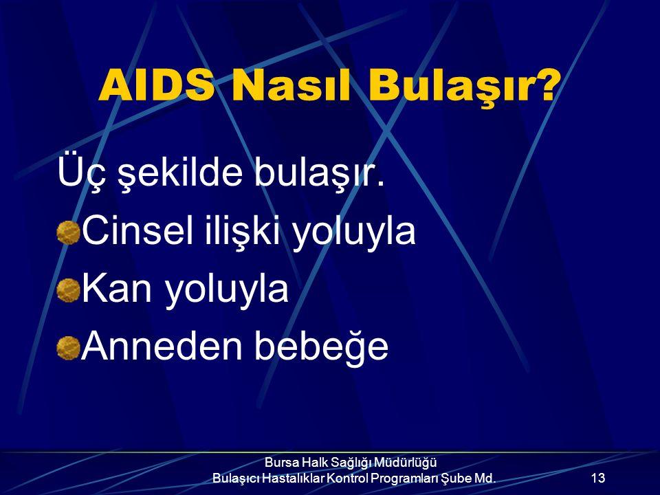 Bursa Halk Sağlığı Müdürlüğü Bulaşıcı Hastalıklar Kontrol Programları Şube Md.12 AIDS Tedavisi? AIDS'in kesin tedavisi yoktur, bugün için ilaç kullanı