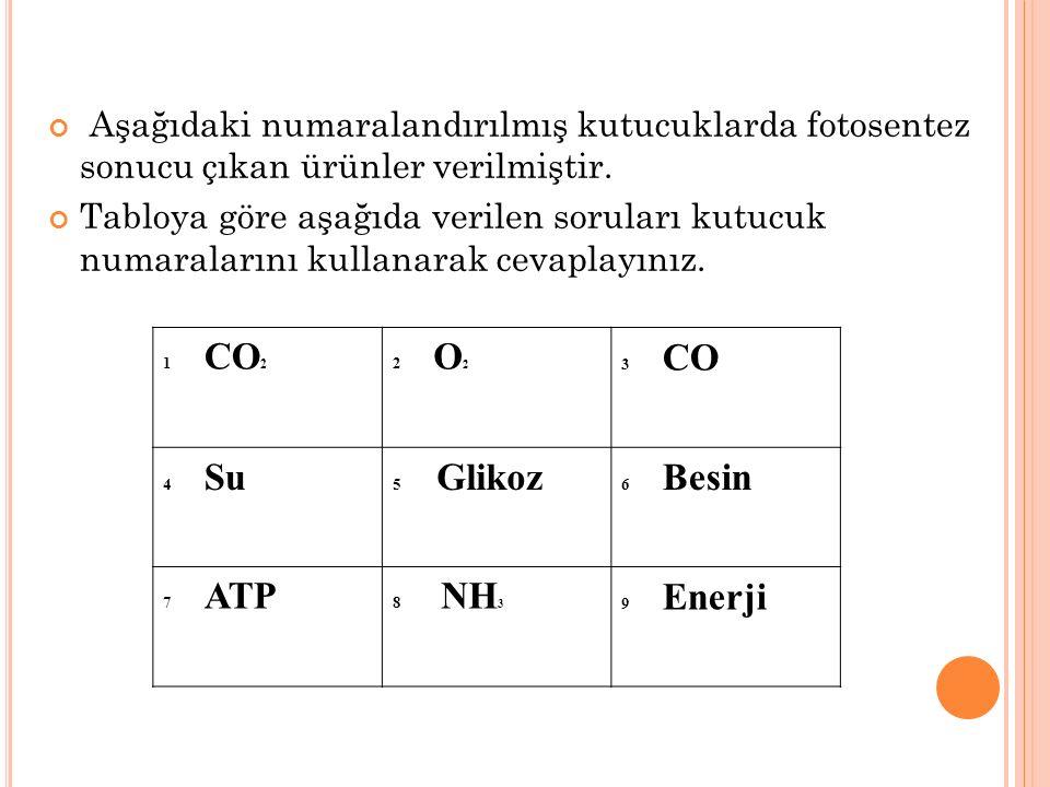 1 CO 2 2 O 2 3 CO 4 Su 5 Glikoz 6 Besin 7 ATP 8 NH 3 9 Enerji Aşağıdaki numaralandırılmış kutucuklarda fotosentez sonucu çıkan ürünler verilmiştir. Ta