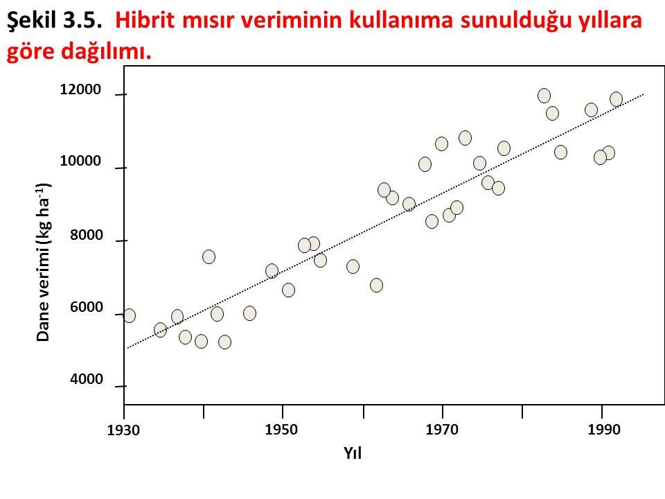 1930 195019701990 4000 6000 8000 10000 12000 Yıl Dane verimi (kg ha -1 ) Şekil 3.5. Hibrit mısır veriminin kullanıma sunulduğu yıllara göre dağılımı.