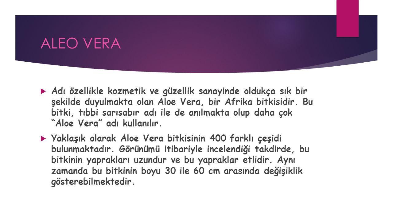 ALEO VERA  Adı özellikle kozmetik ve güzellik sanayinde oldukça sık bir şekilde duyulmakta olan Aloe Vera, bir Afrika bitkisidir.