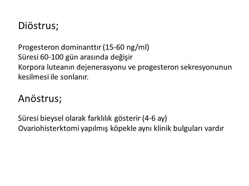 Diöstrus; Progesteron dominanttır (15-60 ng/ml) Süresi 60-100 gün arasında değişir Korpora luteanın dejenerasyonu ve progesteron sekresyonunun kesilme