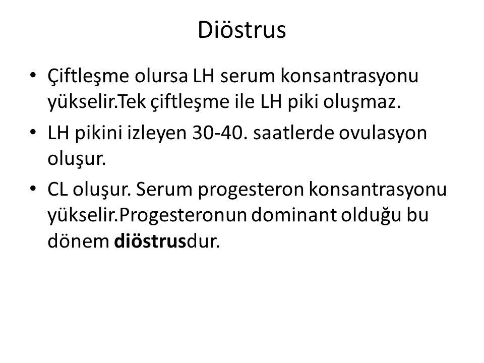 Diöstrus Çiftleşme olursa LH serum konsantrasyonu yükselir.Tek çiftleşme ile LH piki oluşmaz. LH pikini izleyen 30-40. saatlerde ovulasyon oluşur. CL