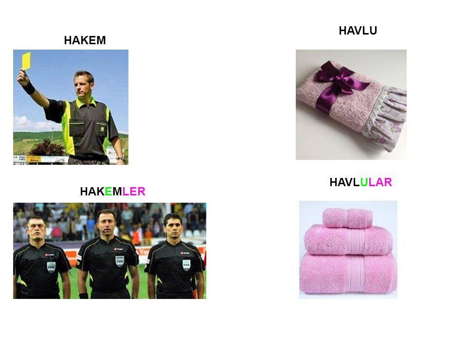 HAVLU HAKEMLER HAKEM HAVLULAR