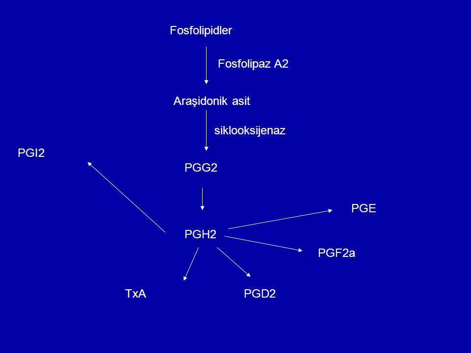 Etki şekli: PGlerin etkilerinin çeşitliliği ve bazen zıt yönde olması birden fazla reseptörün bulunmasına bağlıdır.