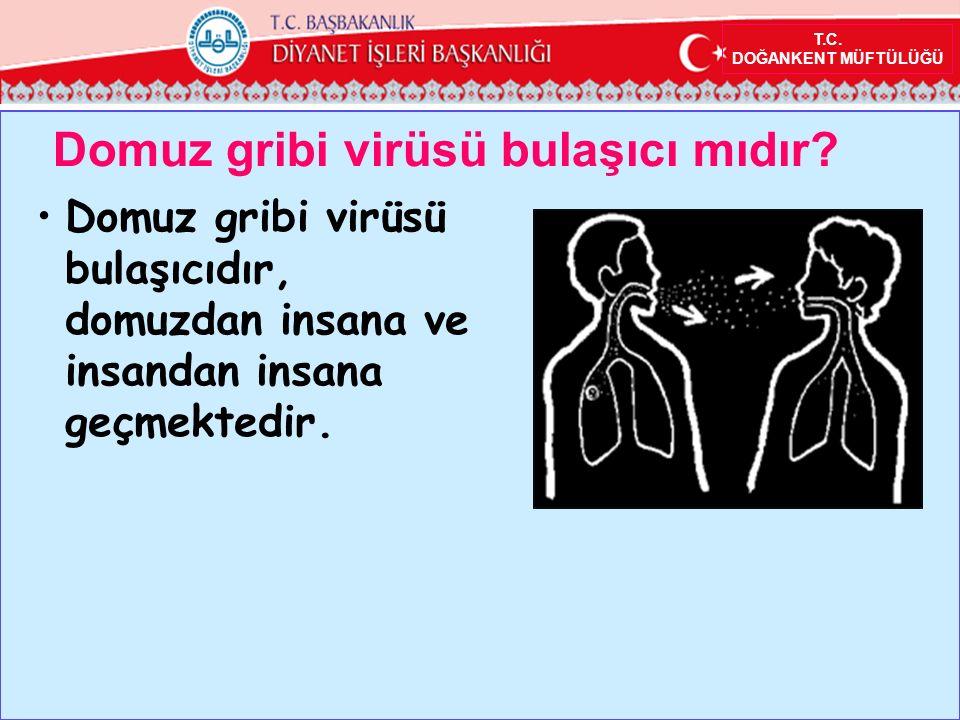 T.C.DOĞANKENT MÜFTÜLÜĞÜ Domuz gribi virüsü bulaşıcı mıdır.