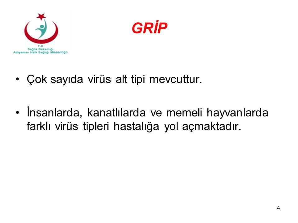 4 GRİP Çok sayıda virüs alt tipi mevcuttur. İnsanlarda, kanatlılarda ve memeli hayvanlarda farklı virüs tipleri hastalığa yol açmaktadır.