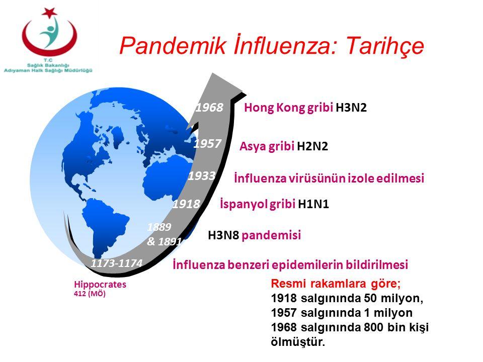 1918 1933 1957 1968 Asya gribi H2N2 Hong Kong gribi H3N2 İnfluenza virüsünün izole edilmesi İspanyol gribi H1N1 Hippocrates 412 (MÖ) 1173-1174 İnfluenza benzeri epidemilerin bildirilmesi 1889 & 1891 H3N8 pandemisi Pandemik İnfluenza: Tarihçe Resmi rakamlara göre; 1918 salgınında 50 milyon, 1957 salgınında 1 milyon 1968 salgınında 800 bin kişi ölmüştür.
