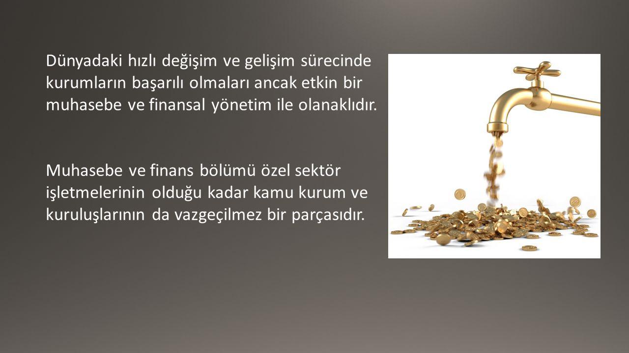 Dünyadaki hızlı değişim ve gelişim sürecinde kurumların başarılı olmaları ancak etkin bir muhasebe ve finansal yönetim ile olanaklıdır.