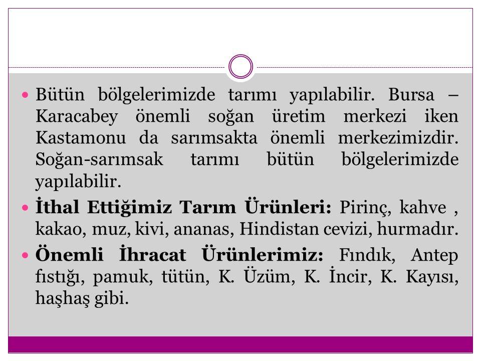 Bütün bölgelerimizde tarımı yapılabilir. Bursa – Karacabey önemli soğan üretim merkezi iken Kastamonu da sarımsakta önemli merkezimizdir. Soğan-sarıms