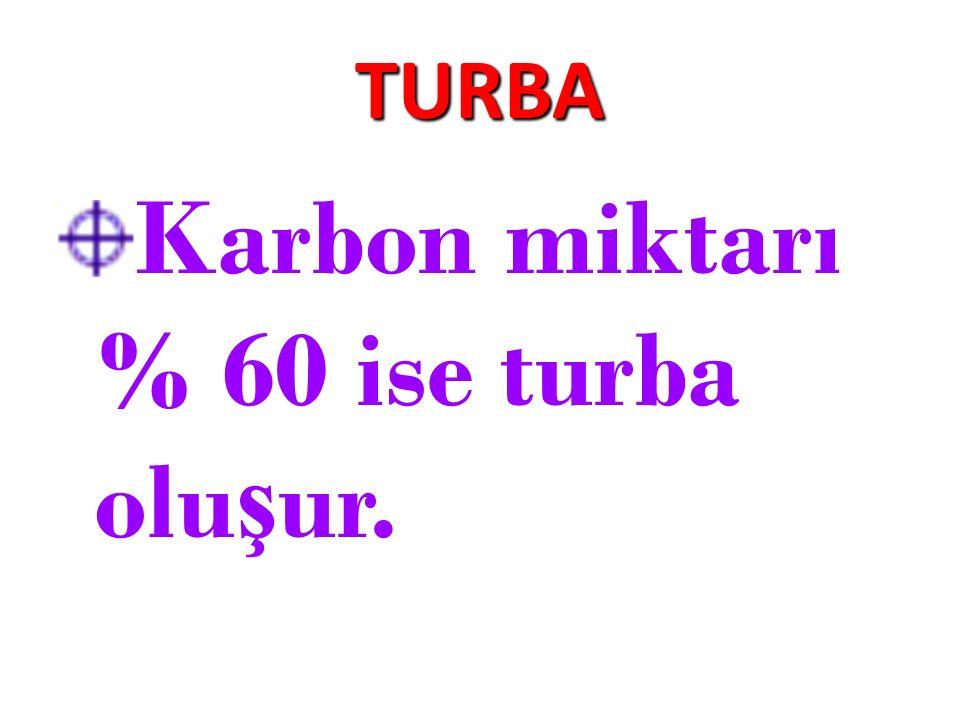 TURBA Karbon miktarı % 60 ise turba olu ş ur.