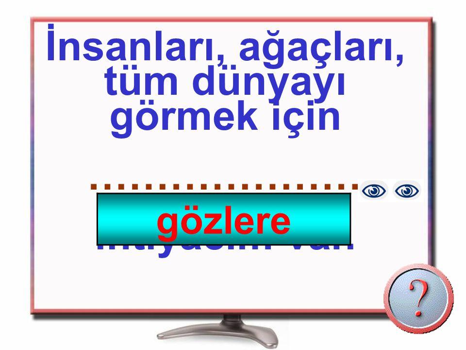 Göz Kulak Burun Dil Deri
