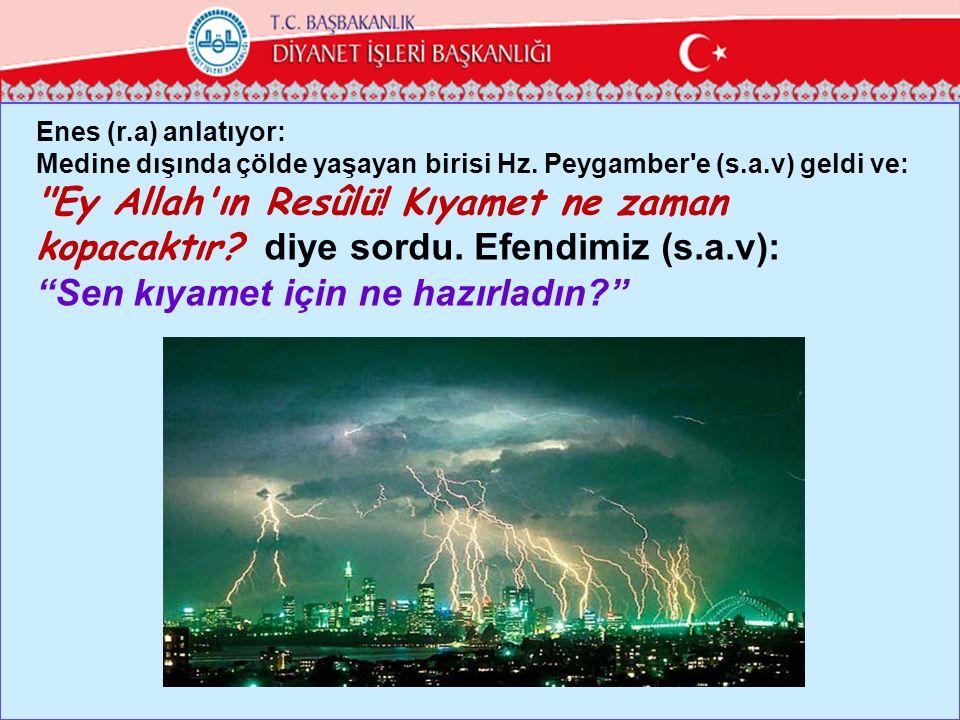 Enes (r.a) anlatıyor: Medine dışında çölde yaşayan birisi Hz. Peygamber'e (s.a.v) geldi ve: