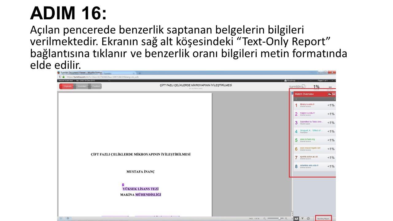 ADIM 16: Açılan pencerede benzerlik saptanan belgelerin bilgileri verilmektedir.
