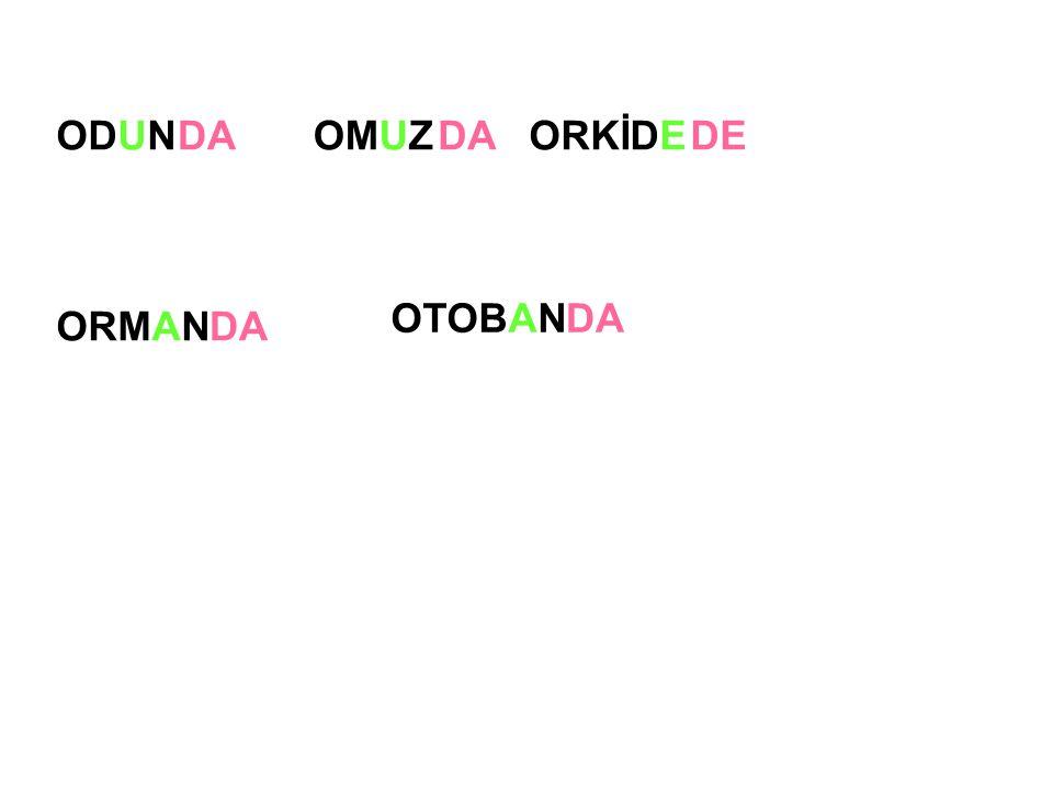 ODUN ORMAN OMUZORKİDEDA DE DA OTOBANDA