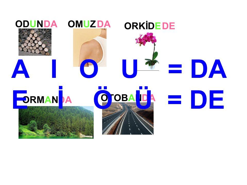 ODUN ORMAN OMUZ ORKİDE DA DE DA OTOBANDA A I O U = DA E İ Ö Ü = DE