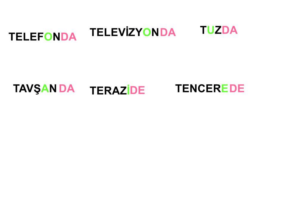 TELEVİZYON TERAZİ TUZTUZ TAVŞAN TELEFONDA DE TENCEREDE