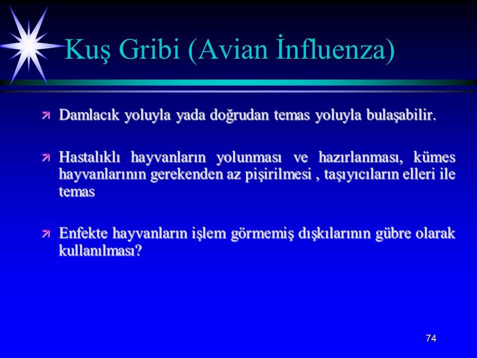 74 Kuş Gribi (Avian İnfluenza) ä Damlacık yoluyla yada doğrudan temas yoluyla bulaşabilir. ä Hastalıklı hayvanların yolunması ve hazırlanması, kümes h