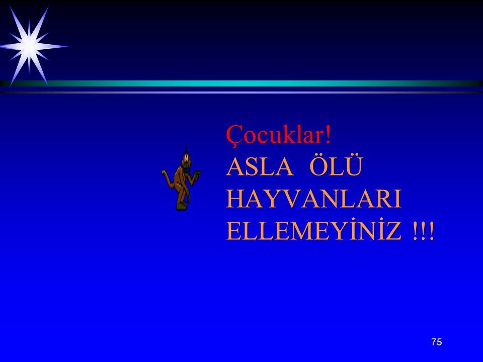 75 Çocuklar! ASLA ÖLÜ HAYVANLARI ELLEMEYİNİZ !!!