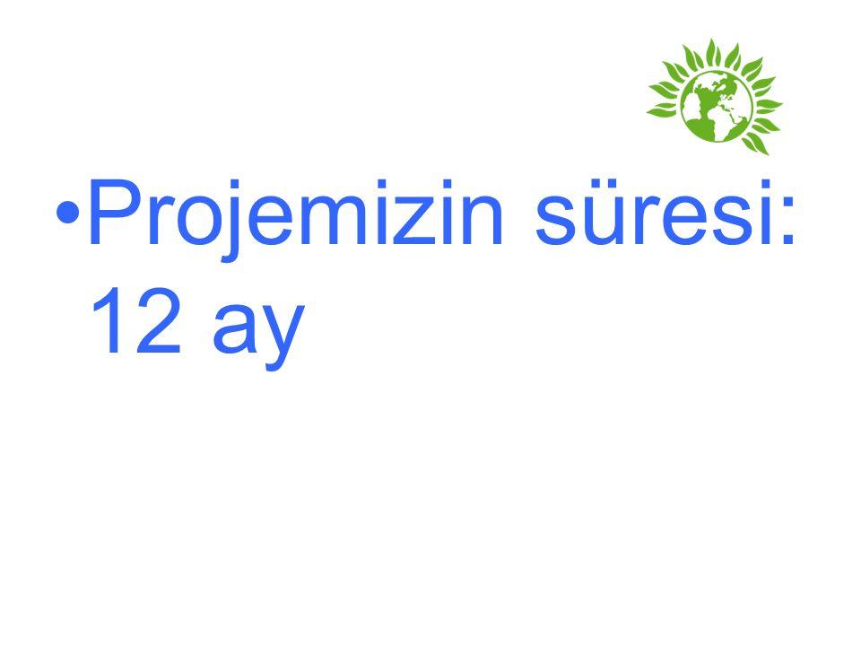 Projemizin süresi: 12 ay