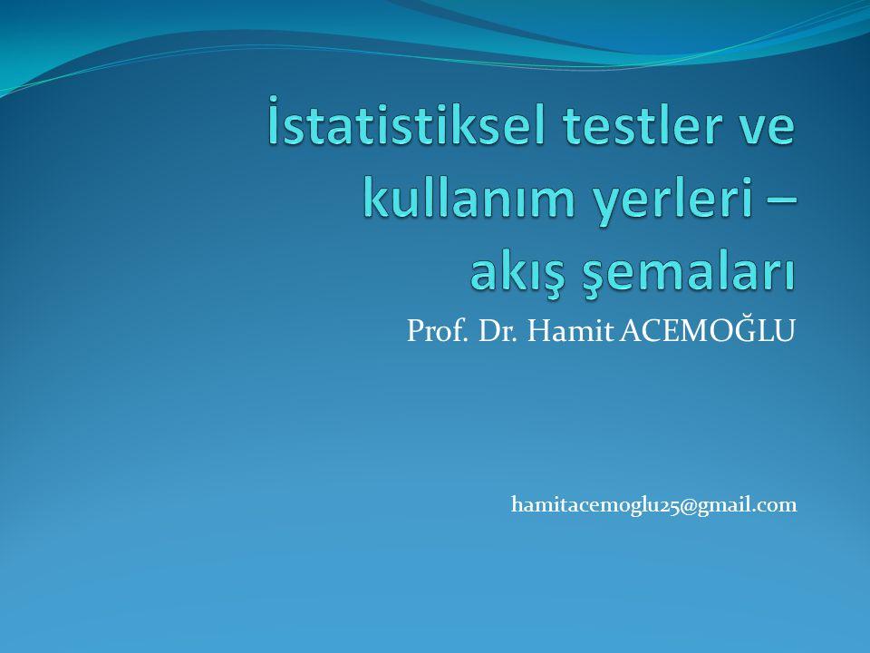 Prof. Dr. Hamit ACEMOĞLU hamitacemoglu25@gmail.com