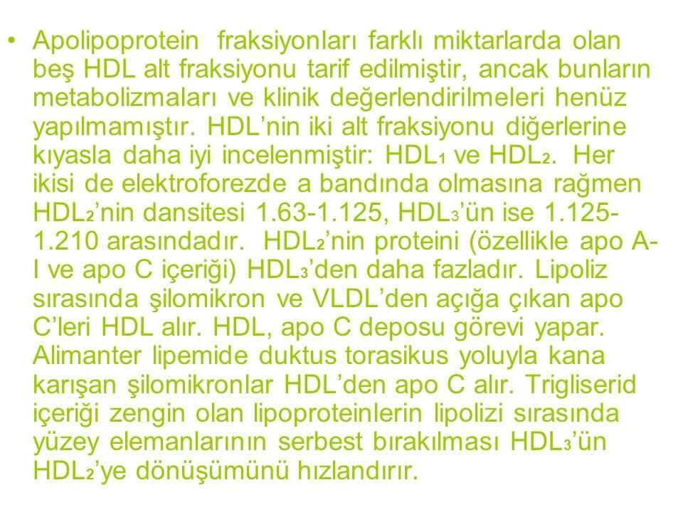 Apolipoprotein fraksiyonları farklı miktarlarda olan beş HDL alt fraksiyonu tarif edilmiştir, ancak bunların metabolizmaları ve klinik değerlendirilme