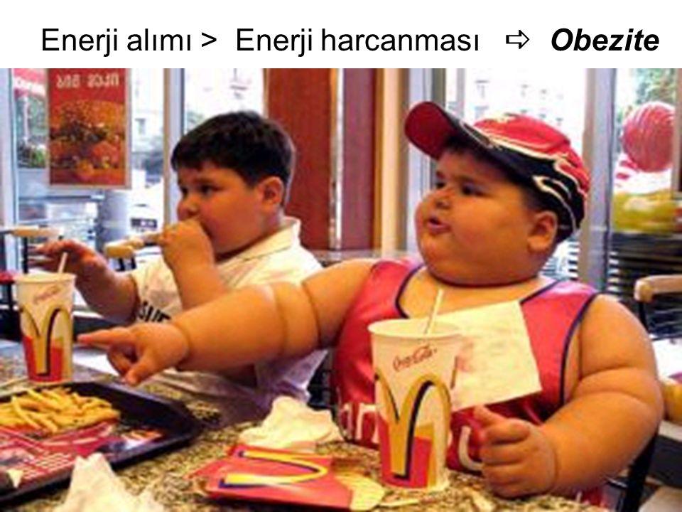 Enerji alımı > Enerji harcanması  Obezite