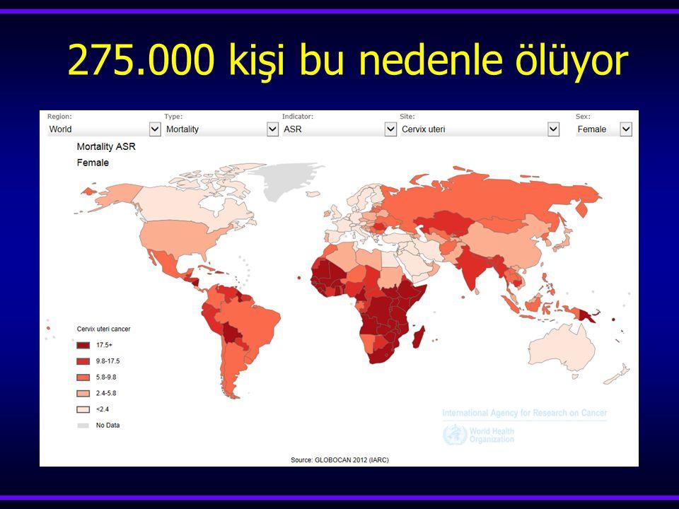 Globocan-2012 Servikal Kanser Vaka Sayısı /yılÖlüm sayısı /yıl Dünyada 527624 265672 Gelişmiş ülkeler 83078 35514 Gelişmekte olan ülkeler 444546 230158 Türkiye 1686 663