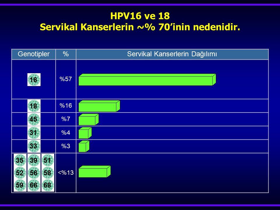 18453133353951 525658 596668 HPV16 ve 18 Servikal Kanserlerin ~% 70'inin nedenidir. Genotipler%Servikal Kanserlerin Dağılımı %57 %16 %7 %4 %3 <%13 16