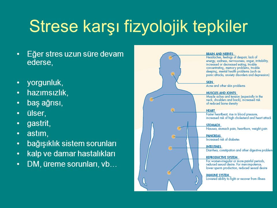 Strese karşı fizyolojik tepkiler Eğer stres uzun süre devam ederse, yorgunluk, hazımsızlık, baş ağrısı, ülser, gastrit, astım, bağışıklık sistem sorunları kalp ve damar hastalıkları DM, üreme sorunları, vb…