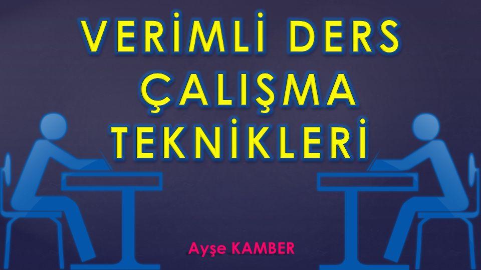 1 Ayşe KAMBER