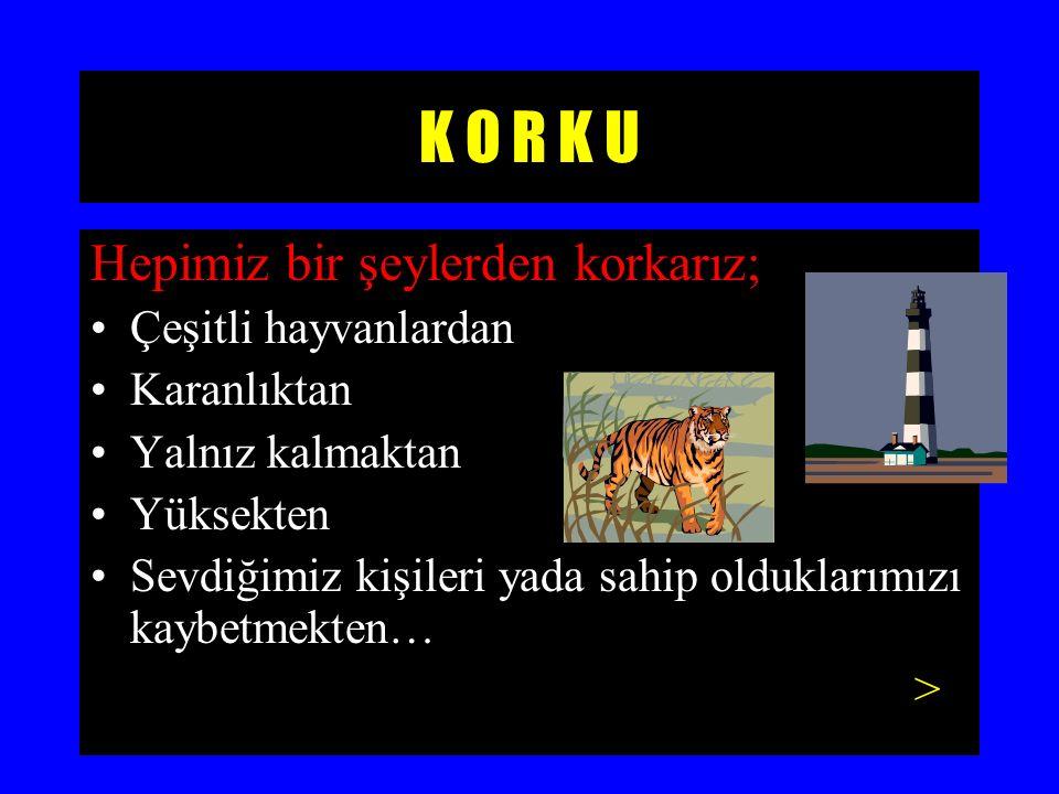 K O R K U Hepimiz bir şeylerden korkarız; Çeşitli hayvanlardan Karanlıktan Yalnız kalmaktan Yüksekten Sevdiğimiz kişileri yada sahip olduklarımızı kaybetmekten… >