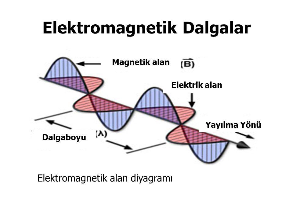 Elektromagnetik Dalgalar Elektromagnetik alan diyagramı Dalgaboyu Yayılma Yönü Elektrik alan Magnetik alan