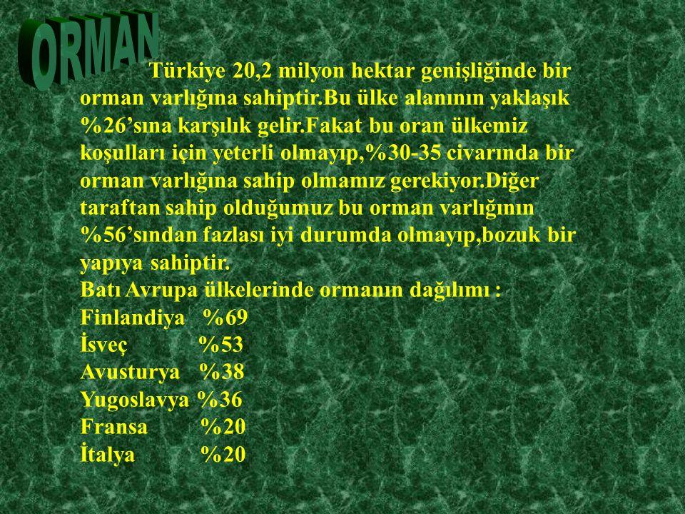 Türkiye 20,2 milyon hektar genişliğinde bir orman varlığına sahiptir.Bu ülke alanının yaklaşık %26'sına karşılık gelir.Fakat bu oran ülkemiz koşulları için yeterli olmayıp,%30-35 civarında bir orman varlığına sahip olmamız gerekiyor.Diğer taraftan sahip olduğumuz bu orman varlığının %56'sından fazlası iyi durumda olmayıp,bozuk bir yapıya sahiptir.