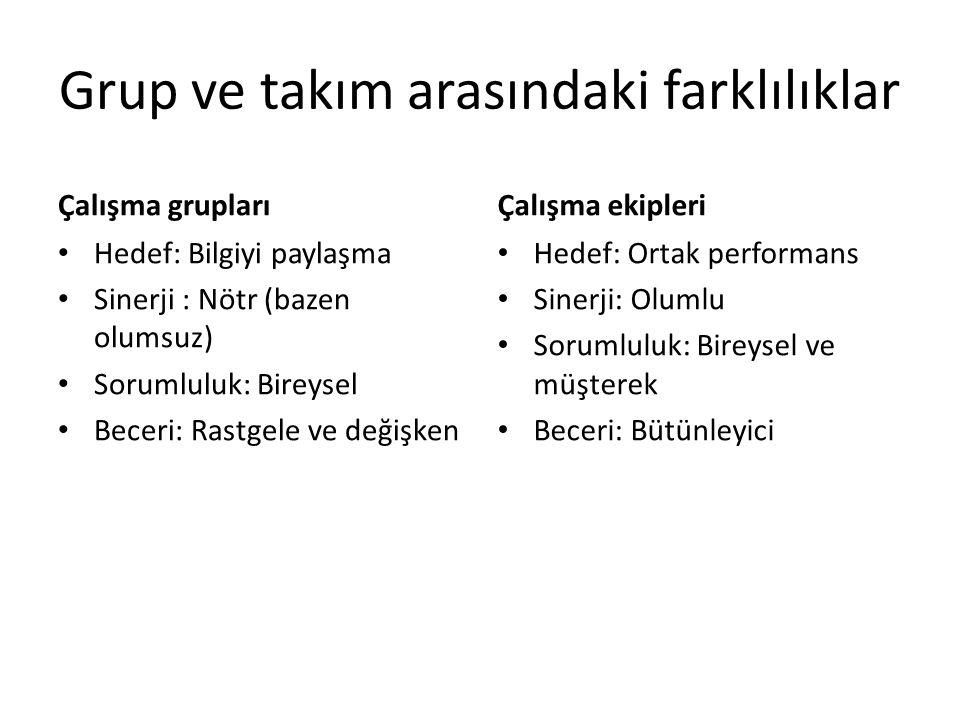 Grup ve takım arasındaki farklılıklar Çalışma grupları Hedef: Bilgiyi paylaşma Sinerji : Nötr (bazen olumsuz) Sorumluluk: Bireysel Beceri: Rastgele ve değişken Çalışma ekipleri Hedef: Ortak performans Sinerji: Olumlu Sorumluluk: Bireysel ve müşterek Beceri: Bütünleyici