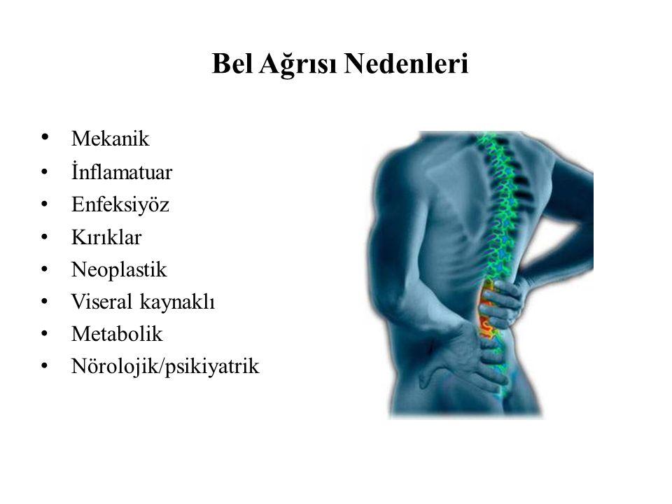Bel Ağrısı Nedenleri Mekanik İnflamatuar Enfeksiyöz Kırıklar Neoplastik Viseral kaynaklı Metabolik Nörolojik/psikiyatrik