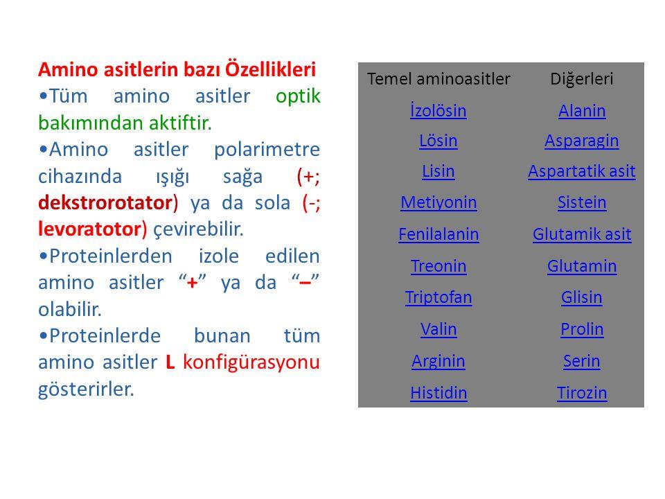 Temel aminoasitlerDiğerleri İzolösinAlanin LösinAsparagin LisinAspartatik asit MetiyoninSistein FenilalaninGlutamik asit TreoninGlutamin TriptofanGlis
