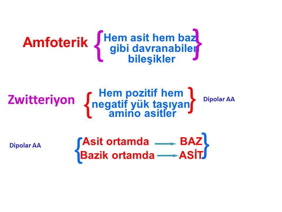 Hem asit hem baz gibi davranabilen bileşikler Amfoterik } } } Hem pozitif hem negatif yük taşıyan amino asitler Zwitteriyon Dipolar AA } Asit ortamda