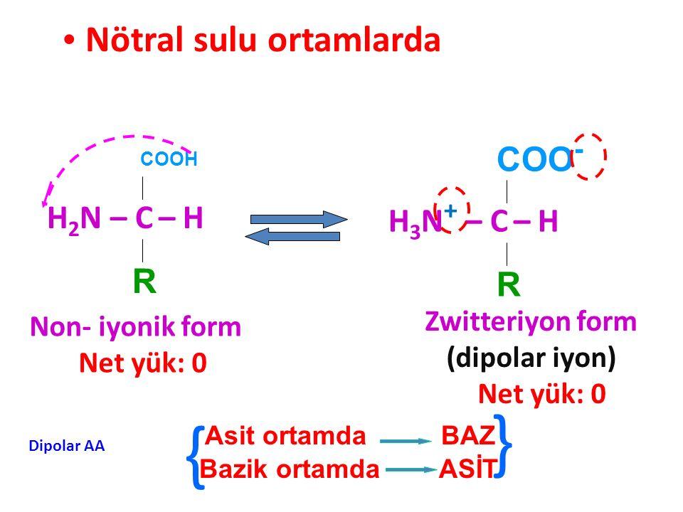 Nötral sulu ortamlarda COOH H 2 N – C – H R COO - H 3 N + – C – H R Zwitteriyon form (dipolar iyon) Net yük: 0 Non- iyonik form Net yük: 0 Asit ortamd
