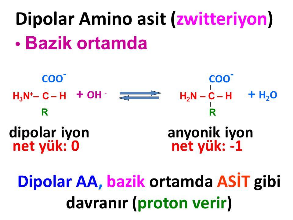 H 2 N – C – H COO - R Dipolar Amino asit (zwitteriyon) Bazik ortamda Dipolar AA, bazik ortamda ASİT gibi davranır (proton verir) + OH - H 3 N + – C –