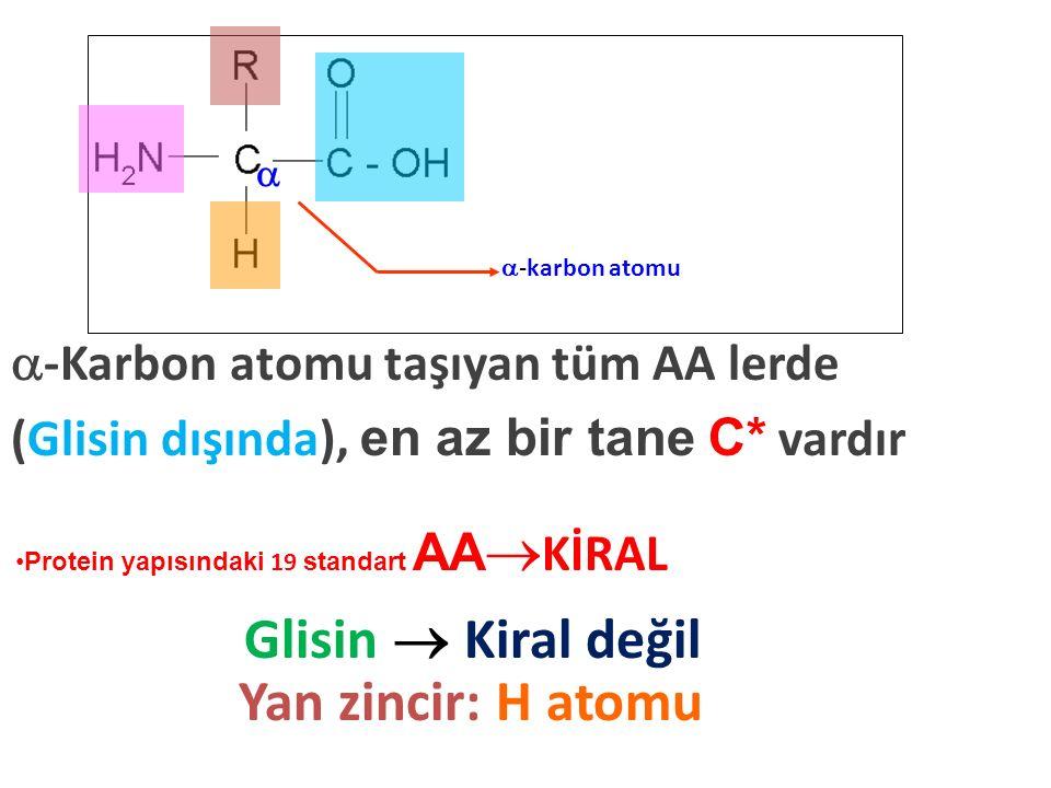  -karbon atomu  -Karbon atomu taşıyan tüm AA lerde (Glisin dışında), en az bir tane C* vardır Glisin  Kiral değil Yan zincir: H atomu Protein yapıs